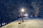 Обои Зимний вечер в парке, Череповец, Россия, фотограф Viacheslav Direnko