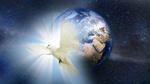 Обои Голубь в лучах света на фоне планеты Земля, в звездном, космическом пространстве