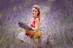 Обои Красивая девушка с букетом лаванды в корзинке стоит в лавандовом поле, автор Adina Voicu