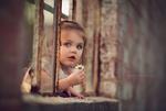 Обои Девочка с ромашкой в окне старого кирпичного здания, фотограф Sarah Morris