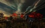 Обои Две лошади под облачным небом, by DDimitri16