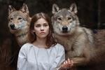 Обои Модель Алена Зверева с волком Драго и волчицей Шакирой на фоне природы, фотограф Светлана Никотина