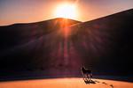 Обои Немецкая овчарка стоит перед калифорнийскими дюнами, фотограф Brock Whittaker