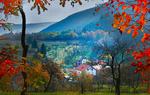 Обои Домики в окружении деревьев, на переднем плане яркие осенние листья на ветках деревьев, Stojcevac village, Sarajevo, Bosnia / Стойцевак, Сараево, Босния, фотограф Mevludin Sejmenovic