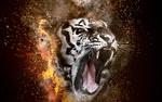Обои Голова тигра, окутанная огненным кольцом, с открытой пастью