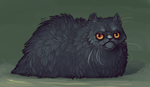 Обои Черный кот на зеленом фоне, by deathnear