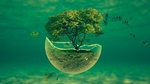 Обои Зеленеющее дерево на островке в воде