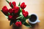 Обои Букет тюльпанов рядом с чашкой кофе