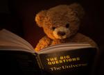 Обои Игрушечный мишка с книгой, by BCKimages