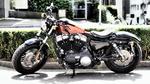 Обои Мотоцикл Harley Davidson припаркован возле кустов