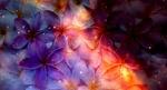 Обои Фон из фиолетовых цветов, by KihOskh714