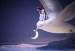Обои Девушка на чайке с месяцем в клюве над природой, укрытой густым туманом, by janespy