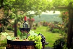 Обои Виноград, бутылка и бокалы с вином на бочке в саду