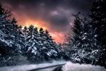 Обои Дорога в лесу пол мрачным розовым небом, фотограф Makis Bitos