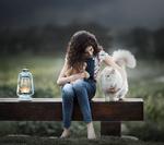 Обои Девочка сидит рядом с пушистой кошкой и игрушечным мишкой в руке на лавочке с фонарем, фотограф Sveta Butko