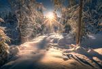Обои Яркое солнце освещает зимний лес, фотограф Stian Bergsveen