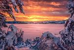 Обои Зимний рассвет, на переднем плане деревья в снегу, фотограф Stian Bergsveen