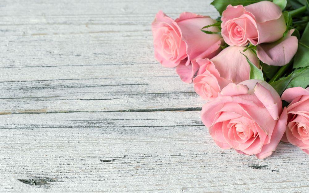 Обои для рабочего стола Розовые розы на дощатой поверхности