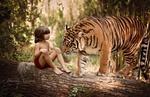 Обои Мальчик с тигром в джунглях, Шерхан и Маугли, фотограф Daniela Tricomi