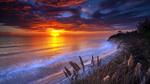 Обои Побережье Сан-Диего / San Diego на закате солнца, США / USA, фотограф Steve Skinner