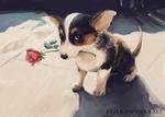 Обои Собачка с розой во рту, автор Julia Kampanula