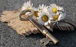 Обои Большой ключ с надписью Dream / Мечта лежит рядом с букетом ромашек на фигурно вырезанном куске дерева