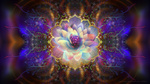 Обои Лотос на фоне разноцветной абстракции, Magic Portal / Волшебный портал, by Lilyas