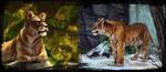 Обои Львица и тигр на природе, by AlaxendrA