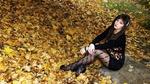 Обои Симпатичная брюнетка позирует, сидя на камне, на фоне опавшей листвы