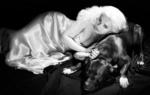Обои Киноактриса Abigail Breslin / Эбигейл Бреслин лежит на сукне с собакой, фотограф Mike Ruiz