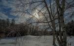 Обои Зимний пейзаж природы на фоне пасмурного неба