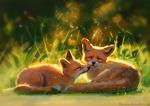 Обои Две лисички на поляне, by Meorow