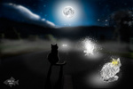 Обои Черный кот сидит на трассе лунной ночью на фоне кошачьих призраков, Road ghosts / Дорога призраков, by kira793