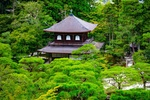 Обои Традиционный японский дом в зеленом парке, Киото / Kyoto, Япония / Japan