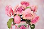 Обои Розовые розы в вазе