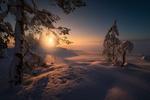 Обои Туманный день в январе, Ringerike, Норвегия. Фотограф Ole Henrik Skjelstad