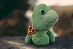 Обои Зеленая плюшевая черепаха Тортилла на размытом фоне