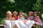 Обои Компания германских кукол сидит за столом с клубникой и цветами на природе