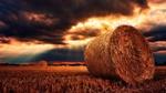 Обои Кипы сена на скошенном поле, by jplenio