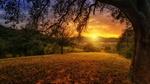 Обои Пейзаж природы на рассвете, by jplenio