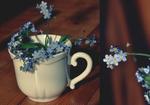 Обои Чашка с незабудками, by vitzy