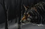 Обои Волк в профиль на фоне голых деревеьев, by Brevis-art