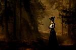 Обои Колдунья стоит в ночном лесу, by Anja Osenberg