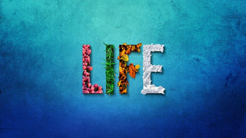 Обои для рабочего стола Слово LIFE / ЖИЗНЬ, буквы которого выполнены, как символы четырех пор года: весны, лета, осени и зимы, by Jonny Lindner