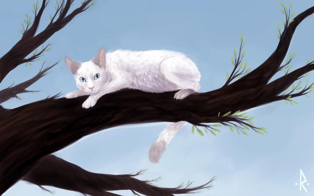 Обои для рабочего стола Белая кошка на дереве, by mellinae