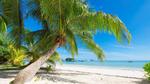 Обои Остров Праслен, Сейшельские острова / Praslin, Seychelles