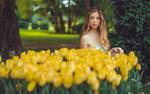Обои Модель Sara Bianchi стоит у желтых тюльпанов, фотограф Marco Squassina