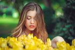 Обои Модель Sara Bianchi смотрит на желтые тюльпаны, фотограф Marco Squassina