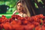 Обои Модель Sara Bianchi стоит перед красными тюльпанами, фотограф Marco Squassina