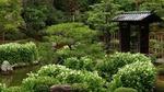 Обои Традиционный японский дом с прудом в зеленом парке, Киото / Kyoto, Япония / Japan